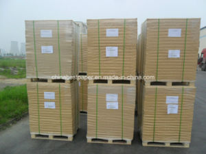 Eastern Dragon Paper Manufacture-White Offset Printing Paper pictures & photos