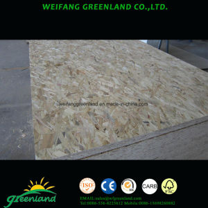 1220X2440X18mm E1 Grade OSB Board for Furniture pictures & photos