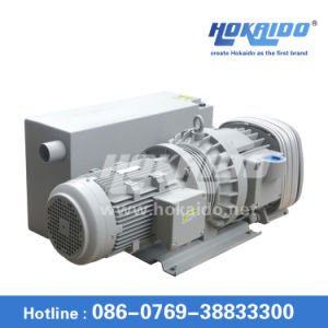 Lower Cost Oil Lubricated Rotary Vane Vacuum Pump (RH0250) pictures & photos