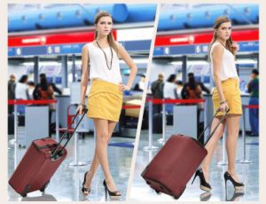 Foldable Trolley Luggage Travel Bag pictures & photos