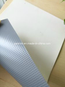 PVC Pond Liner for Fish Farm for Malaysia pictures & photos