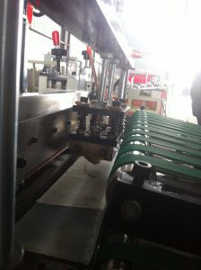 Plastic Bag Making Machine of Flower Bags, U Shape Bags (DC-600) pictures & photos