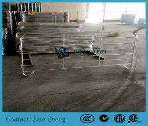 Hot DIP Galvanized Sheep Yard Panels pictures & photos