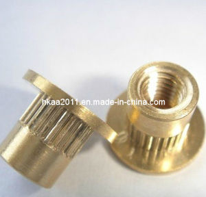 Brass Knurled Body Blind Rivet Screw Nut, Brass Nut/Bolt pictures & photos