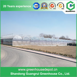 China Hot Galvanized Steel Frame Plastic Greenhouse pictures & photos