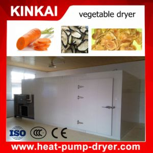 Easy Operate Carrot/ Red Chill Dryer Oven pictures & photos