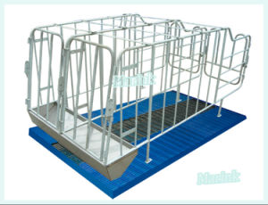 Gestation Stall Pig Equipment Hot Galvanized Gestation Crates pictures & photos