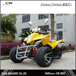 200cc EEC Racing ATV Quad Trike pictures & photos