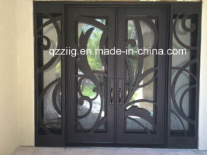 Artical Wrought Iron Double Door with Sidelight (ZY-IR068)