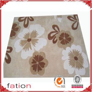 Acrylic Fibers Competitive Price Shaggy Carpet Floor Area Mat pictures & photos