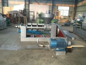 Canola Oil Production Line (6YL-165) pictures & photos