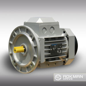 AC Motor with Break Made in China pictures & photos