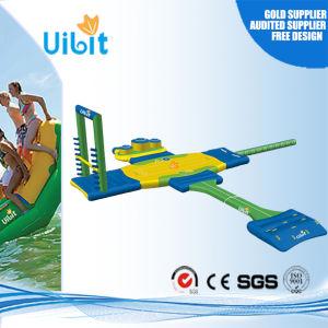Outdoor Water Playground / Water Amusement Park (AquaArena)