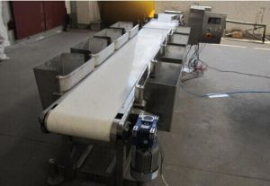 Belt Grader/ Belt Weigher Made in China pictures & photos