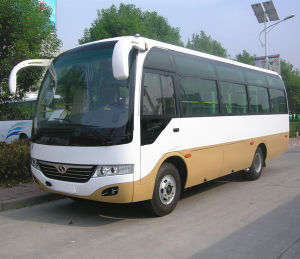 Chinese Cheap Diesel Bus with 30 Seats pictures & photos