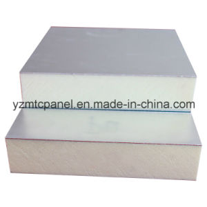 UV Resistance FRP PU Panel for Trailer pictures & photos