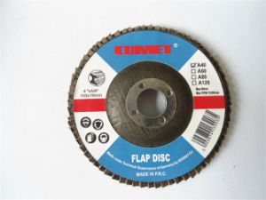 Flap Disc -100X40# pictures & photos
