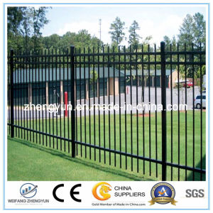 Good Quality Wrought Iron Fence / Garden Fence pictures & photos