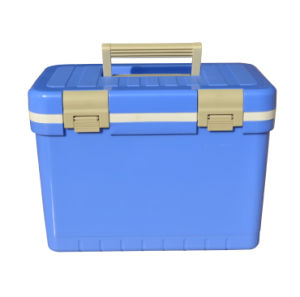 Cooler Box, Ice Box, 11L, Cooler Box pictures & photos
