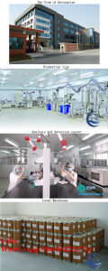 Chinese Manufacturer Provide Bkm120 Powder for The Pan-Pi3k Inhibition CAS: 944396-07-0 pictures & photos