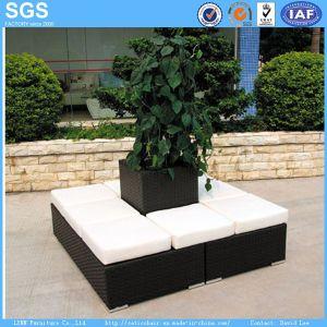 Garden Furniture pictures & photos