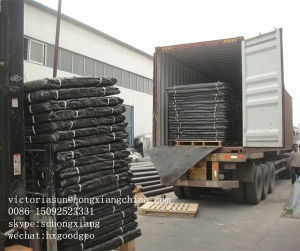 HDPE Dimple Geomembrane pictures & photos