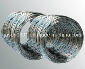 Stainless Steel, Stainless Steel Wire pictures & photos