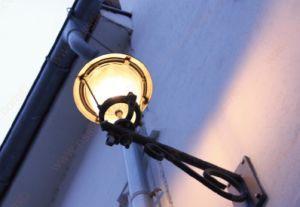 E26 E39 20W LED Garden Light with UL Dlc pictures & photos