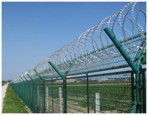 Razor Barbed Fence in China pictures & photos