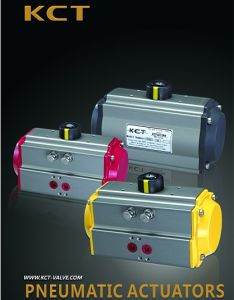 Rt Series Hard Anodizing Pneuamtic Actuator