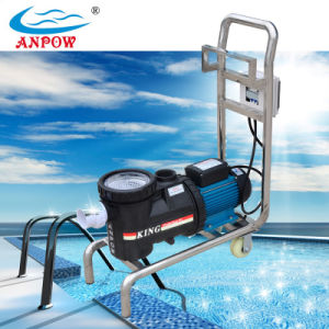 China swimming pool fish pond filter and pump with for Koi pond swimming pool pump