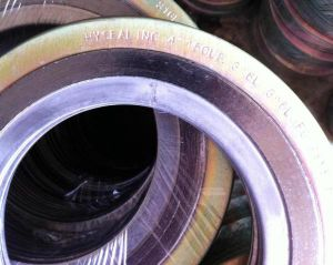 Spiral Wound Gaskets with Inner Outer Ring pictures & photos