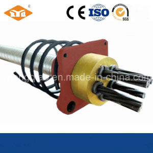 Post-Tensioning Anchoring System pictures & photos
