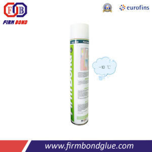 Aerosol Canned Hot Sale Winter Type Polyurethane Foam pictures & photos