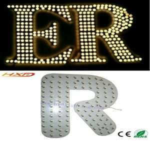 LED Signs/ LED Logo/ LED Words/ LED Characters/ LED Alphabets pictures & photos