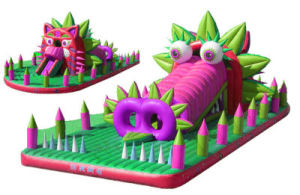 Inflatable Funcity Certificate by EN71 pictures & photos