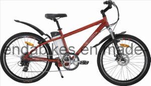 Electric Bicycle/Bike (TDE26M002A)