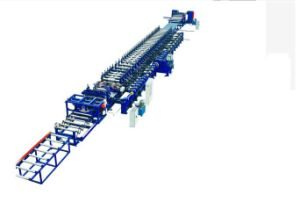 Auto Carriage/ Side Plate/Floor Plate Roll Forming Machine