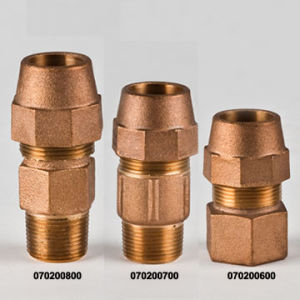 Brass Fitting / Bronze Fitting / Union pictures & photos