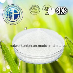 Steroid Hormone Estrogen Hormone Powder Estradiol pictures & photos