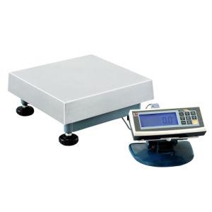 Platform Scale (TCS-MW)