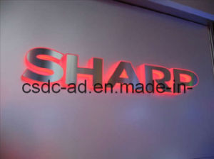 LED Sign/LED Acrylic Stainless Steel Surface Side of The LED Word (HL-002)