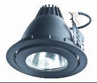 35W/70W G12 PAR30 Recessed Quartz/Ceramic Metal Halide Light With Light Fixtures (JUM-218D)