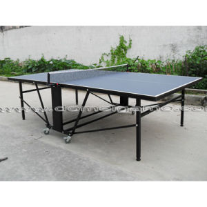 Table Tennis Table (DTT9028) pictures & photos