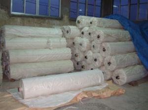 White PP Woven Fabric Made in China pictures & photos