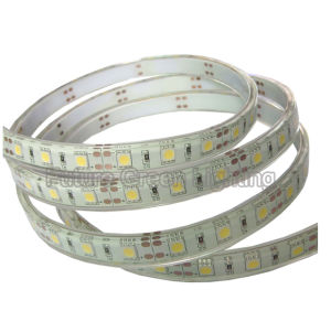 LED Strip with Solid Silicon Cover Tube Waterproof (FG-LS60S5050SW 1) pictures & photos