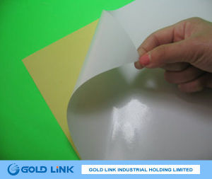 80g High Gloss Adhesive Paper for Label Printing pictures & photos