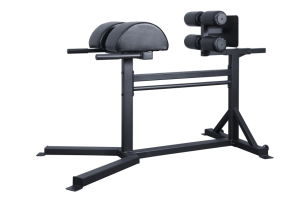 Crossfit Glute Ham Developer/GHD/Roman Chair pictures & photos