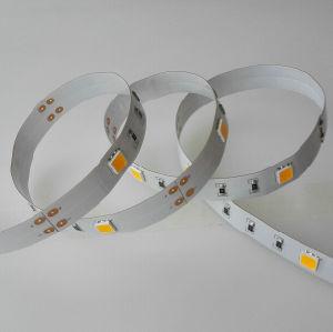 20LEDs/M CREE LED Flexible Strip pictures & photos