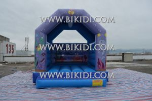Latest Hot Sale Cartoon Theme Printing Inflatable Bouncer, Inflatable Jumping Castle, Inflatable Bouncy B1181 pictures & photos